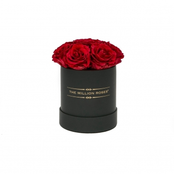 Rote Eternity Roses - Black Box