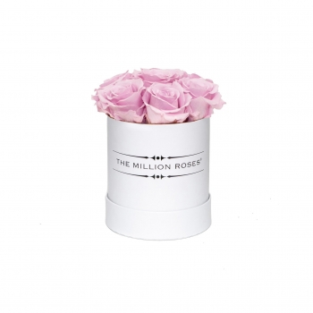 Soft Pink Blow Eternity Roses - Weiss Box