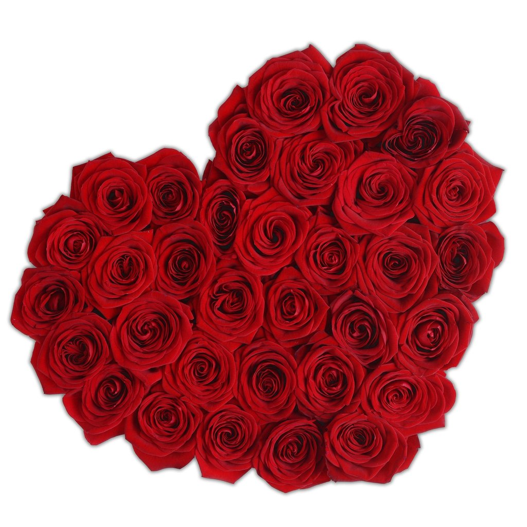 the million roses  more than thousand words  herz box